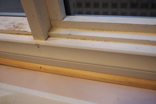 窓枠材を入れ替えてきれいになった